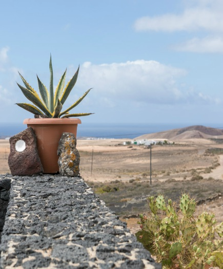 bed and breakfast lanzarote-